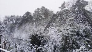 一日だけの雪景色です